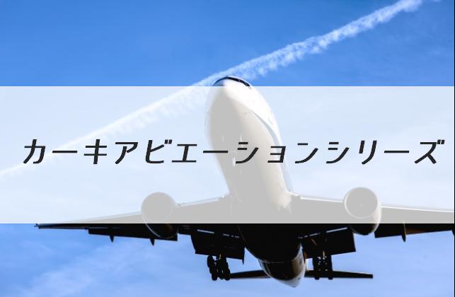 空をバックに飛行機が飛んでいる