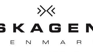 【SKAGEN(スカーゲン)】個人的おすすめメンズ腕時計ランキングベスト10|シンプル・ビジネス用