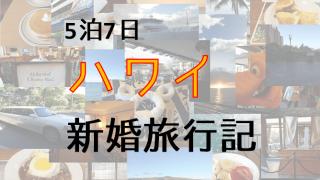 【ハワイ新婚旅行記】5泊7日のハネムーン!日程・準備などありのまま全部書いてく!【2017/11】